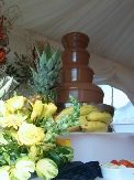 chocolate fountain for home wedding